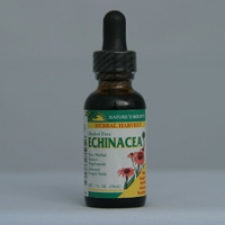 Echinacea Extract Alcohol Free 1 Oz Each - 3 Pack